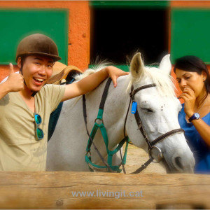The instructor will help you choose a horse according to your personality and skills.
